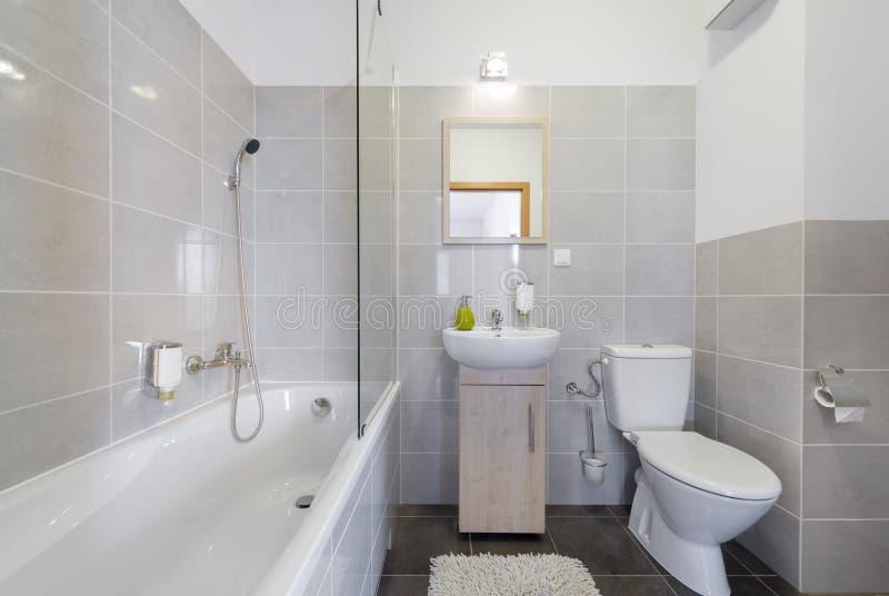 斯堪的纳维亚样式的现代卫生间 库存图片