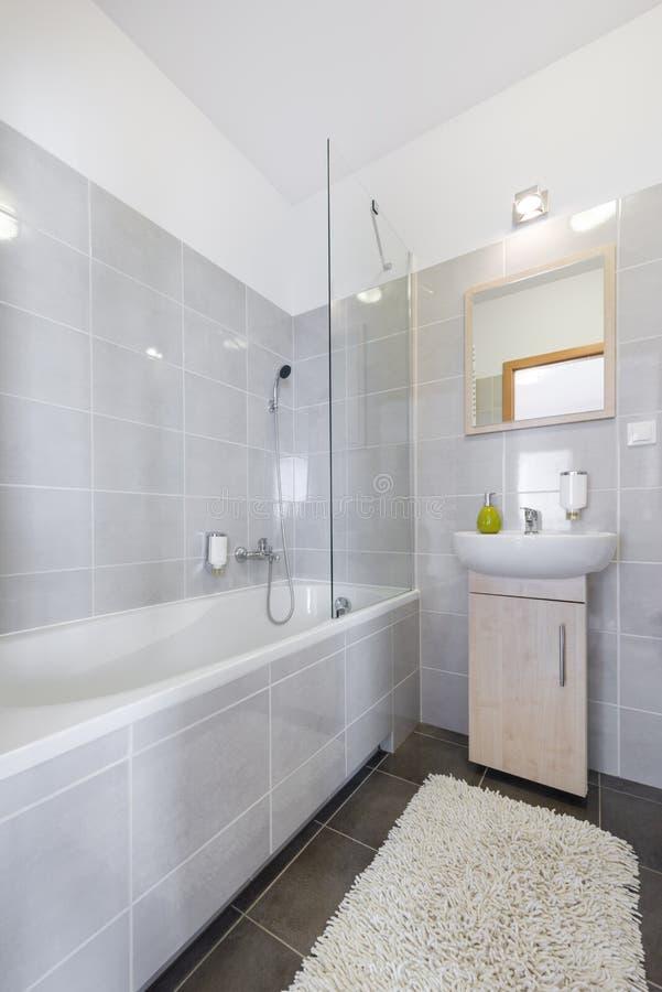 斯堪的纳维亚样式的现代卫生间 免版税库存照片