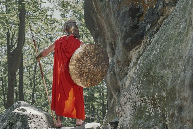 斯巴达战士在森林 免版税库存照片
