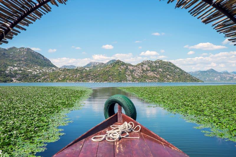 斯库台湖国家公园,黑山 免版税库存照片