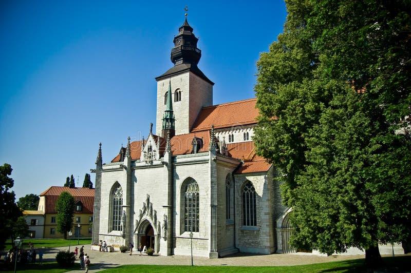维斯比,哥得兰岛大教堂  免版税库存照片