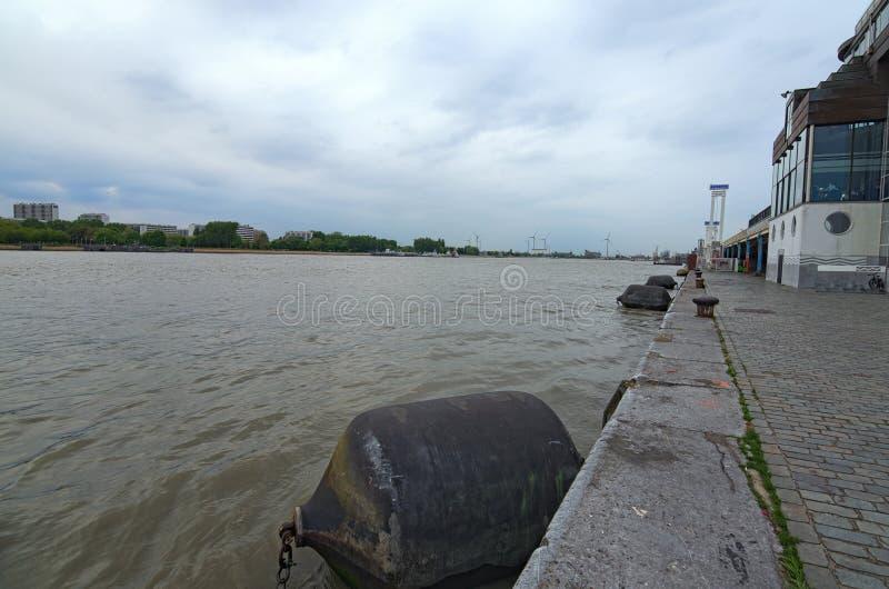 斯海尔德河河堤防在安特卫普,比利时 春天多云天 库存照片