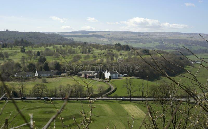 斯特灵,苏格兰国王的Knot - 免版税库存照片