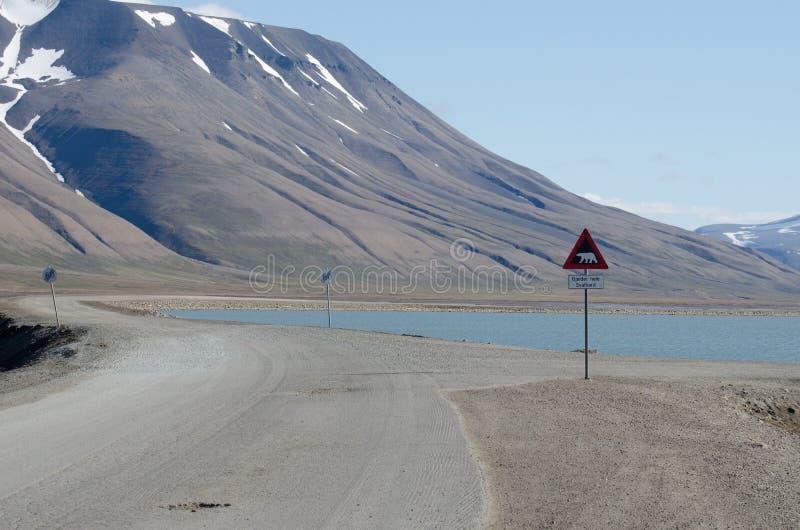 从斯瓦尔巴特群岛的路标北极熊 库存照片