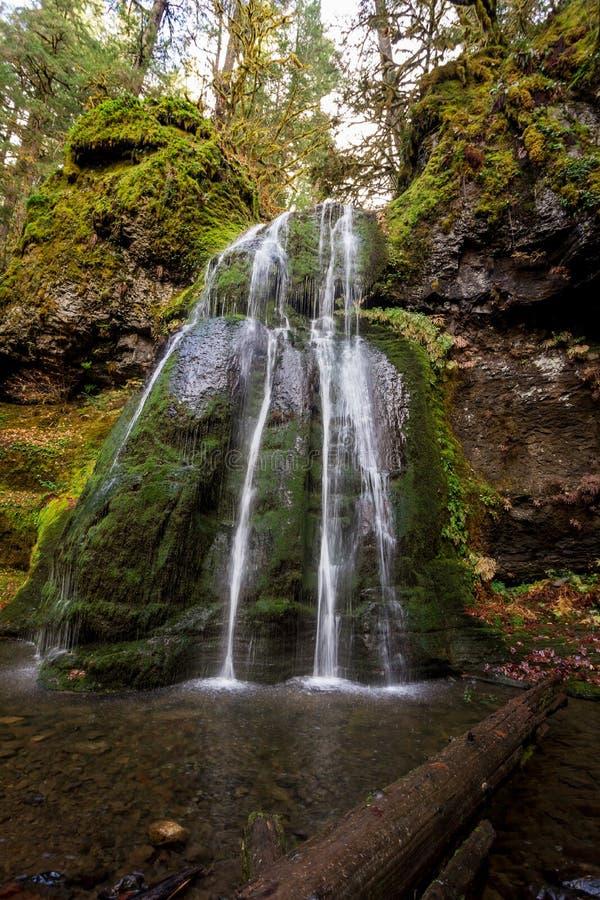 斯皮里特瀑布俄勒冈州乌姆普卡国家森林 免版税库存图片