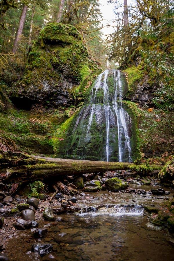 斯皮里特瀑布俄勒冈州乌姆普卡国家森林 免版税库存照片