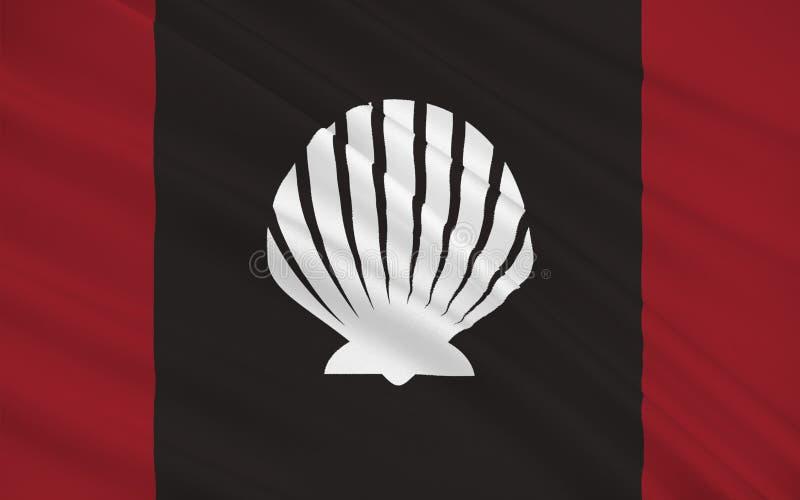 斯莱戈郡旗子是一个县在爱尔兰 皇族释放例证