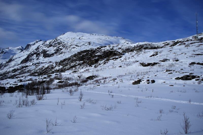 斯诺伊冬天山在有深刻的蓝天背景的北挪威 免版税库存照片