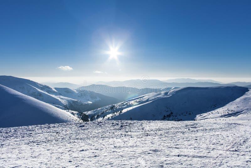 斯诺伊冬天山好太阳天在喀尔巴汗, Dragobrat,乌克兰 免版税图库摄影