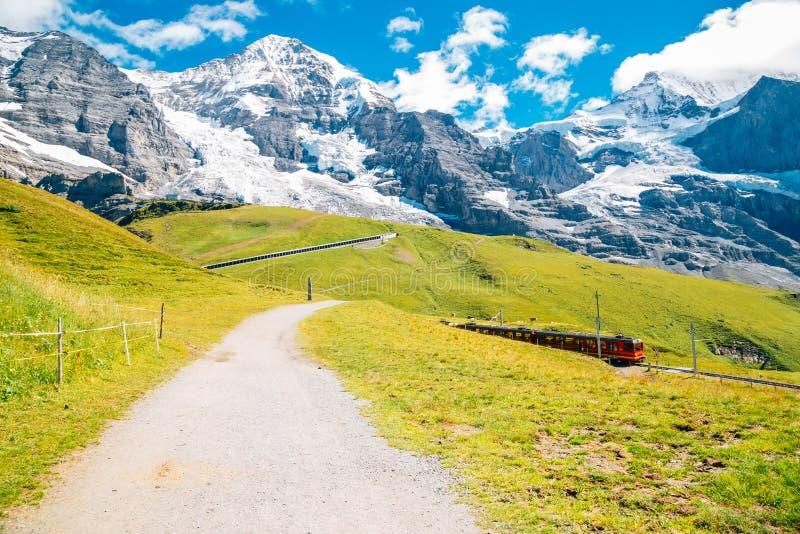 斯诺伊在少女峰地区,瑞士的山和草地 免版税库存图片