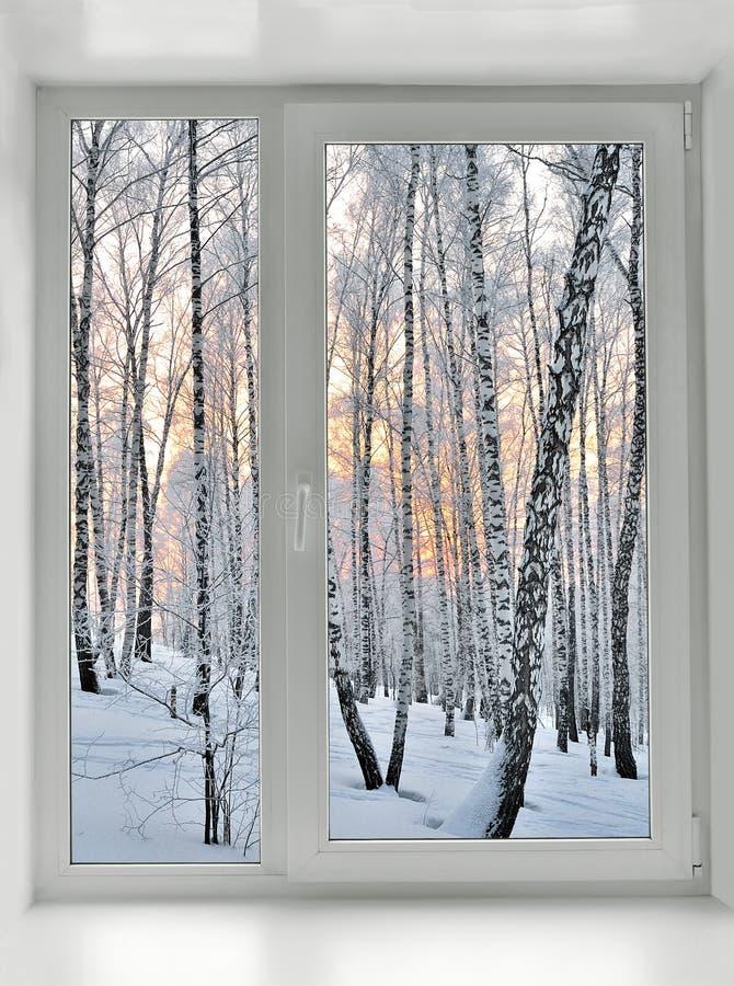 斯诺伊在窗口下的冬天早晨 免版税库存照片