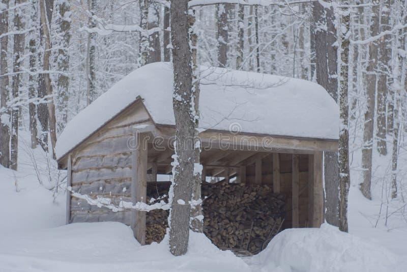 斯诺伊堆木材的棚 免版税库存图片