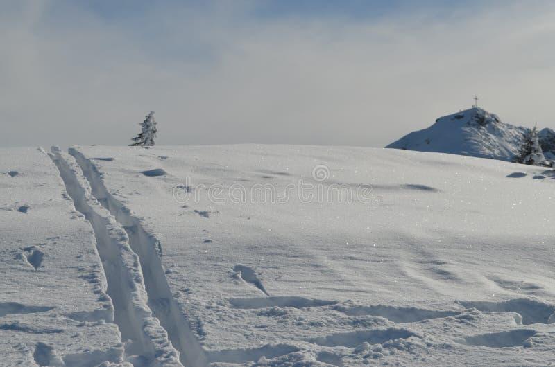 斯诺伊山在有滑雪轨道的弗拉肖奥地利在雪 库存照片