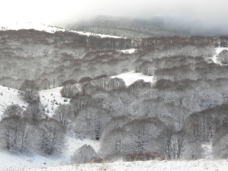 斯诺伊山小山 库存图片