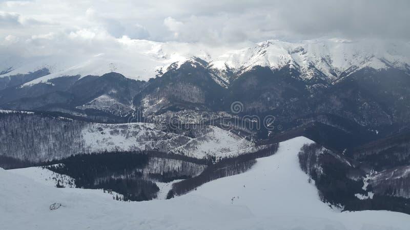 斯诺伊山峰 库存图片