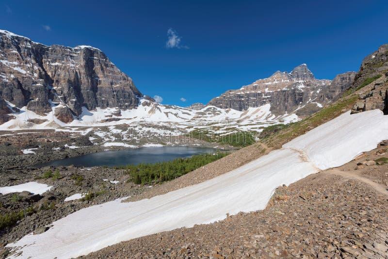 斯诺伊旅游足迹在班夫国家公园,亚伯大,加拿大 免版税图库摄影