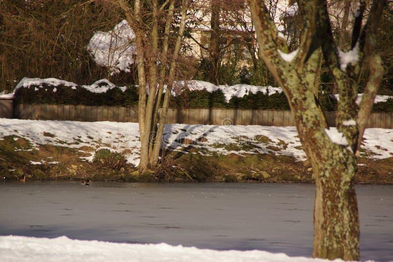 斯诺伊森林-喑哑的池塘在雪下的-法国 免版税库存照片