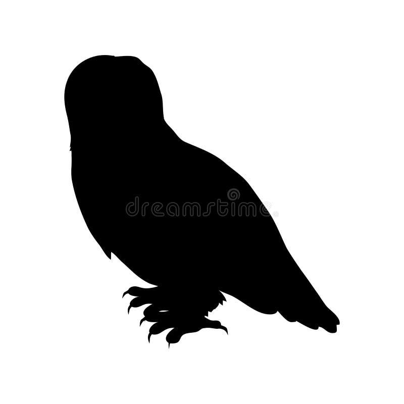 斯诺伊猫头鹰平的设计传染媒介例证 皇族释放例证