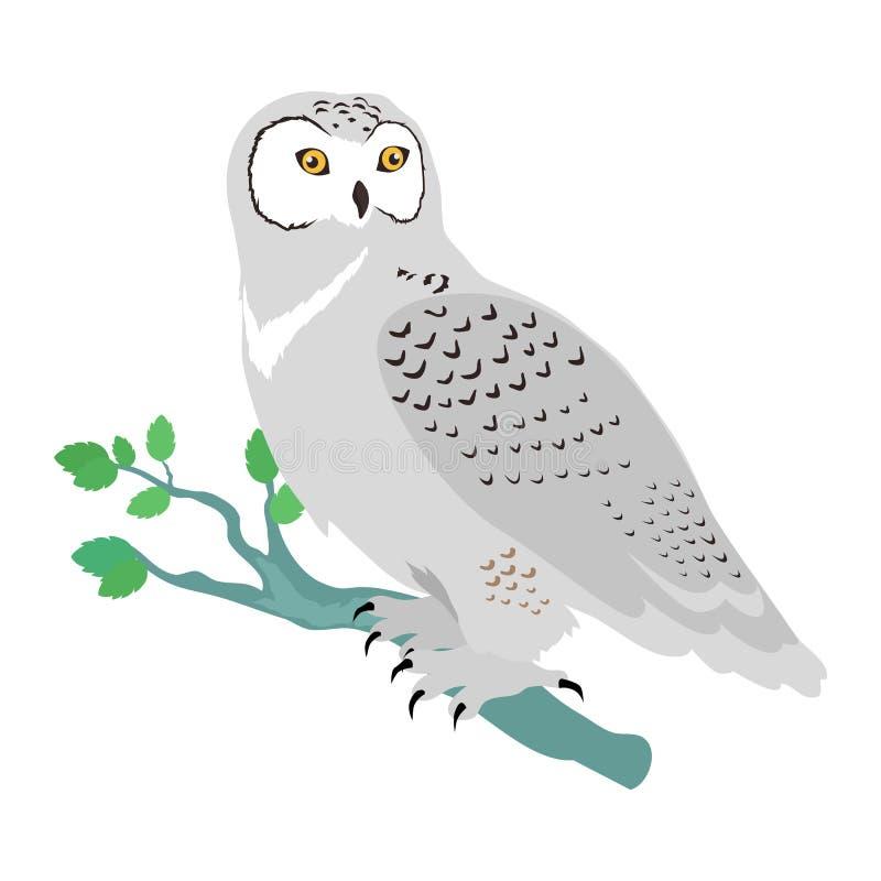 斯诺伊猫头鹰平的设计传染媒介例证 库存例证