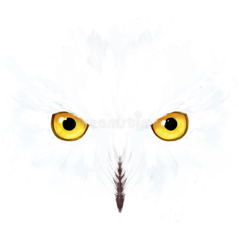 斯诺伊猫头鹰眼睛和面孔 皇族释放例证