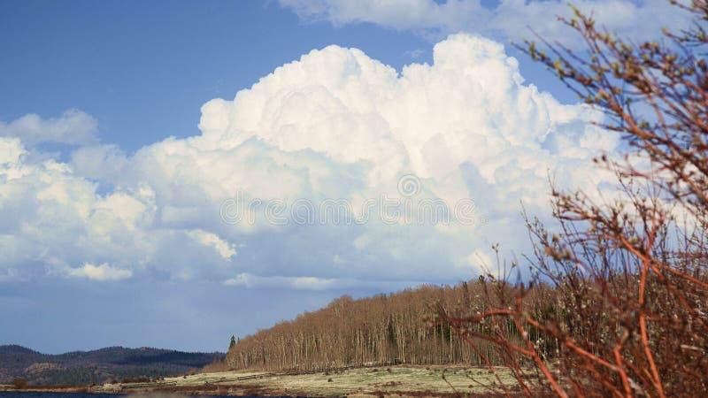 斯诺伊范围山的湖欧文,怀俄明 免版税库存图片