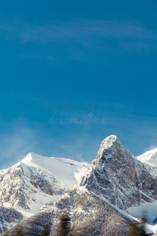 斯诺伊落矶山和天空蔚蓝,班夫,阿尔伯塔 免版税库存照片