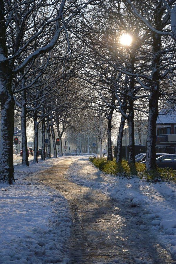 斯诺伊街道在帕彭德雷赫特,荷兰 库存图片
