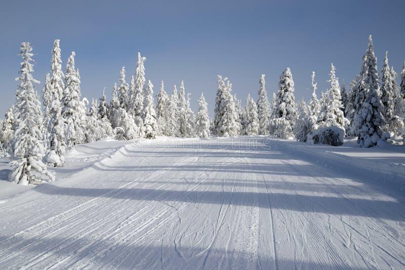 滑雪路 库存照片
