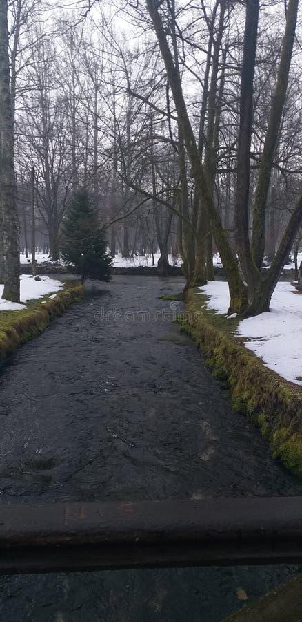 斯诺伊vrelo bosna公园 免版税库存图片