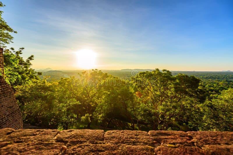 斯里兰卡的热带森林鸟瞰图  免版税库存照片