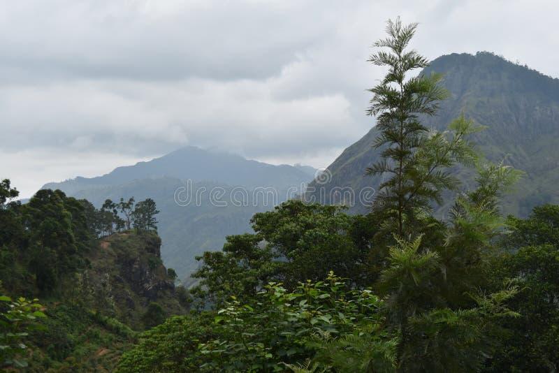 斯里兰卡,埃拉,一点亚当斯峰顶,山 库存照片