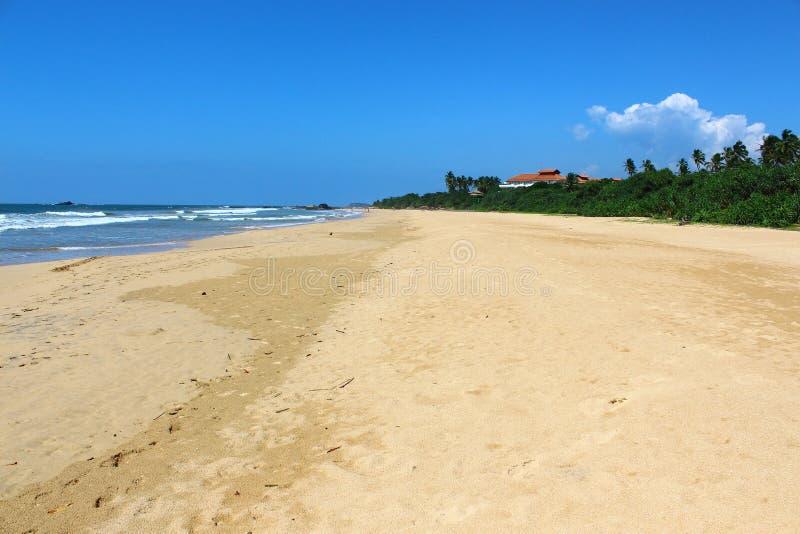 斯里兰卡,本托特海滩 库存图片