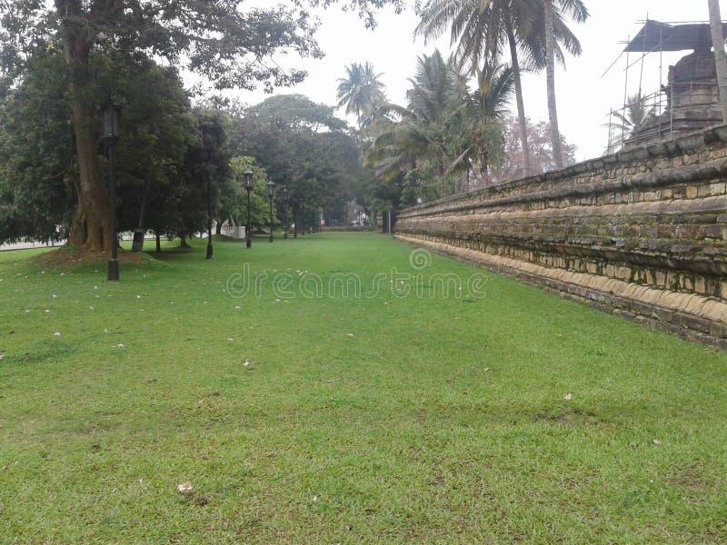 斯里兰卡dalada maligawa 在寺庙的草道路 库存照片