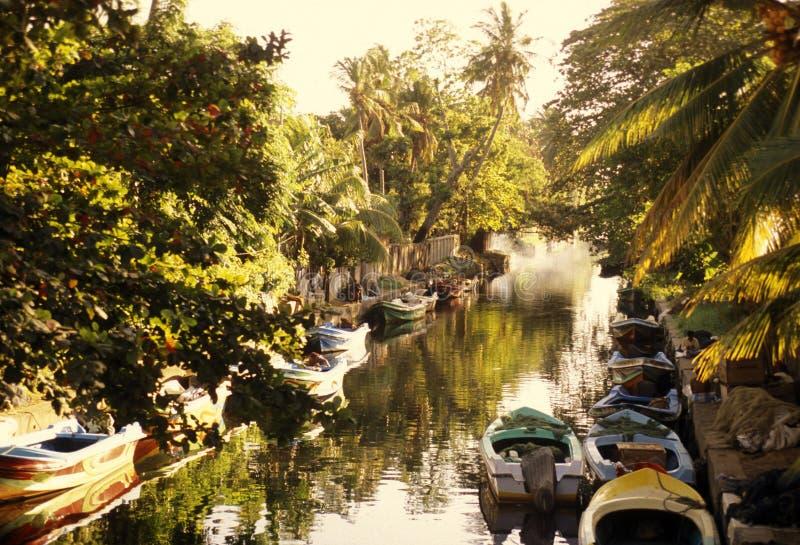 斯里兰卡HIKKADUWA风景河 免版税库存照片
