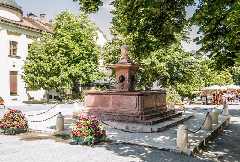 斯雷姆斯基卡尔洛夫奇,塞尔维亚- 2019年6月12日:在市场上的喷泉四狮子在斯雷姆斯基卡尔洛夫奇,塞尔维亚 免版税图库摄影