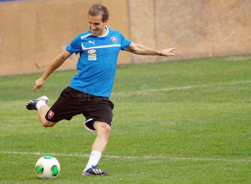 斯洛伐克橄榄球队正式训练 库存图片
