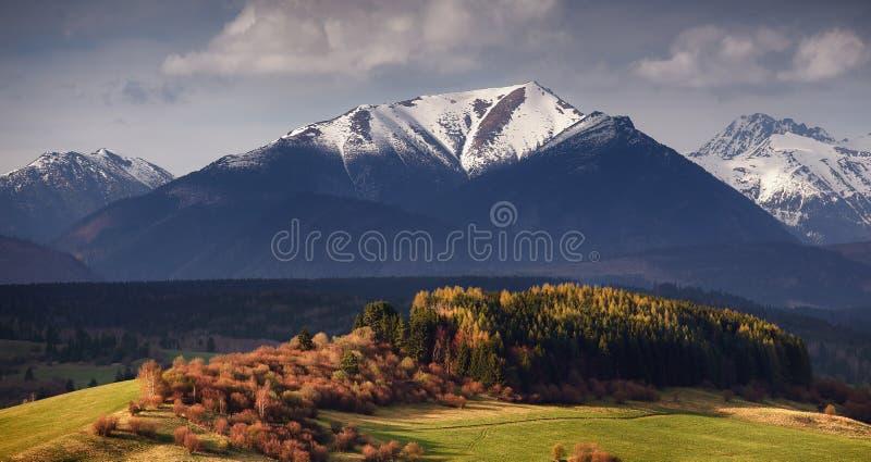 斯洛伐克的Tatra山秋天风景 免版税库存照片