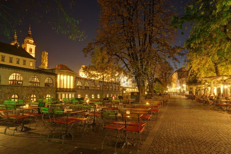 Download 斯洛文尼亚,卢布尔雅那在夜之前 编辑类图片. 图片 包括有 季节, 斯洛文尼亚, 素瓷, 标记, 晚上, 天空 - 72358260