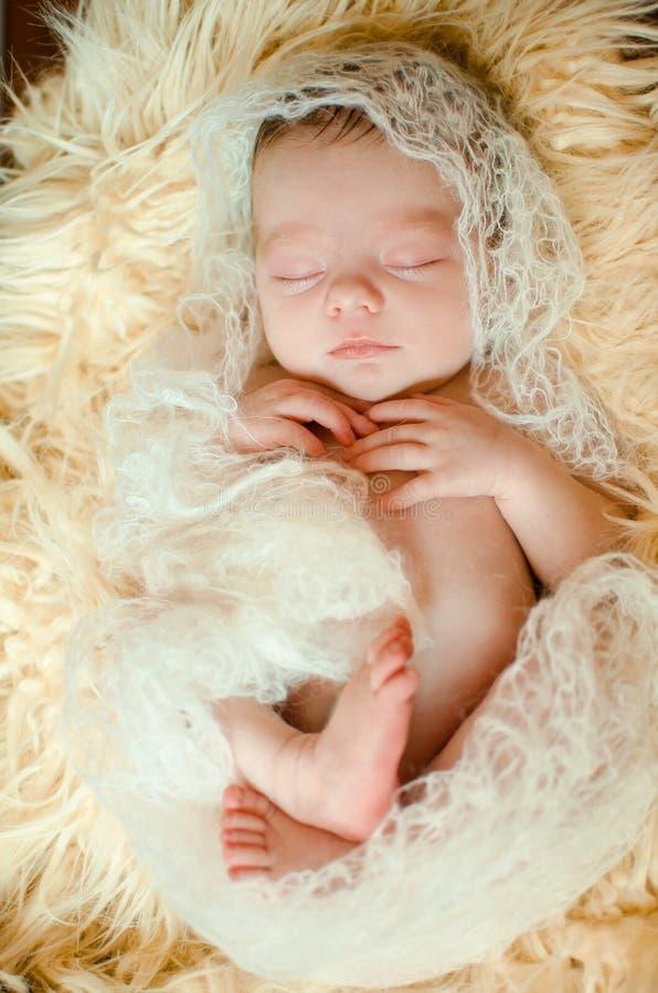 新出生的婴孩在篮子的毛皮说谎 免版税库存图片