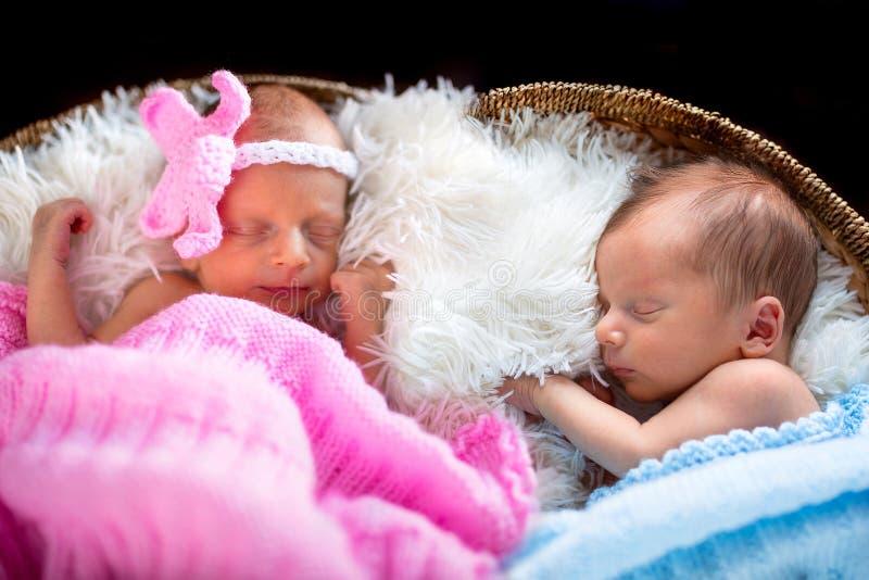 新出生的孪生 库存照片