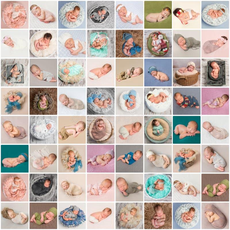 新出生的婴孩照片拼贴画  免版税图库摄影
