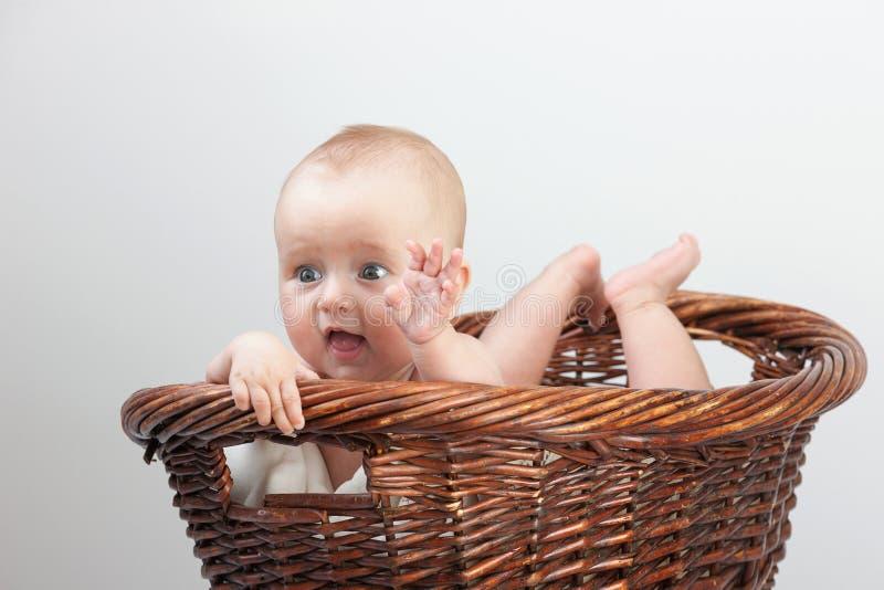 新出生婴孩的篮子 图库摄影