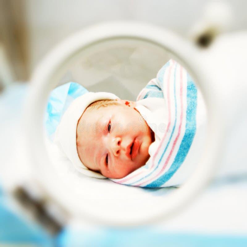 新出生 图库摄影