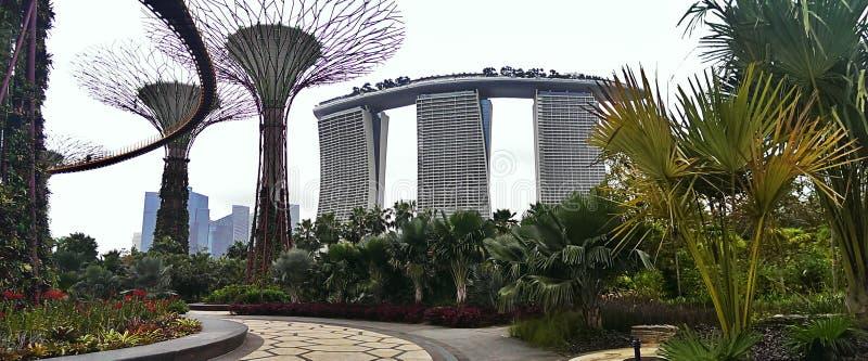 新加坡旅馆和庭院 免版税库存照片