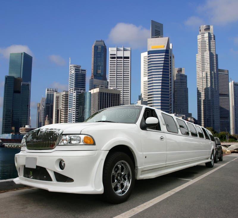 新加坡游人 图库摄影