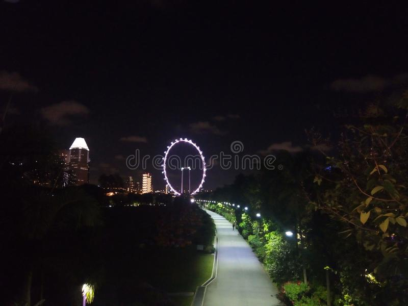 新加坡眼睛 库存图片