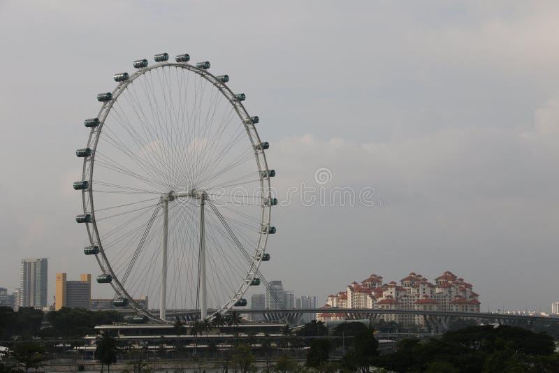 新加坡飞行物-世界的最高的弗累斯大转轮 免版税图库摄影