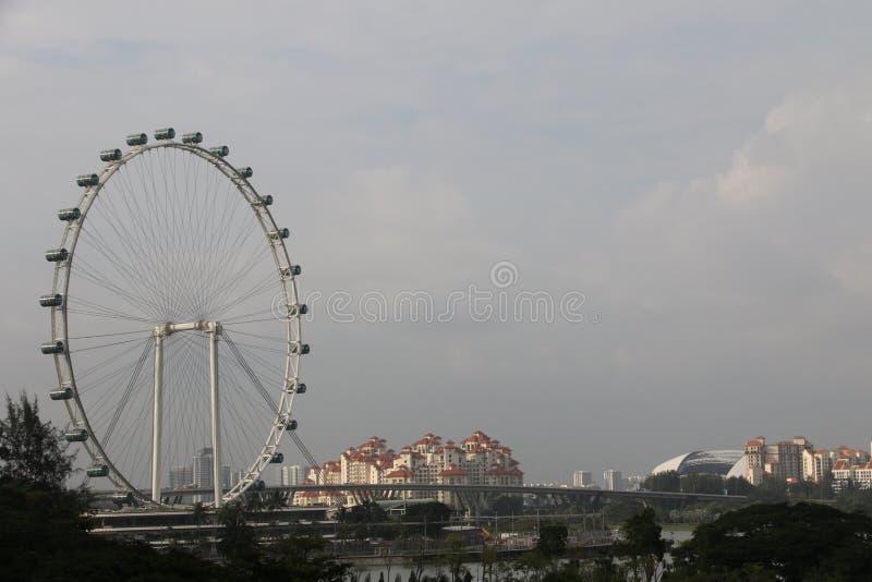 新加坡飞行物-世界的最高的弗累斯大转轮 库存照片