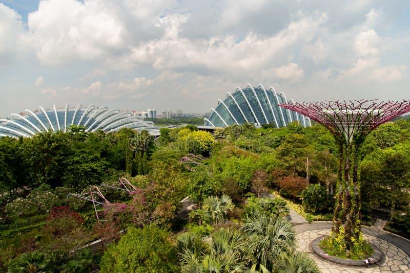新加坡,新加坡- 2018年10月26日:滨海湾公园在新加坡 环境美化的公园全景  图库摄影