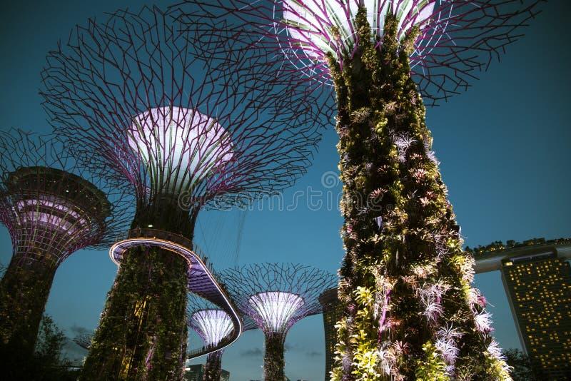 新加坡,由海湾的庭院,小游艇船坞海湾沙子 免版税库存照片